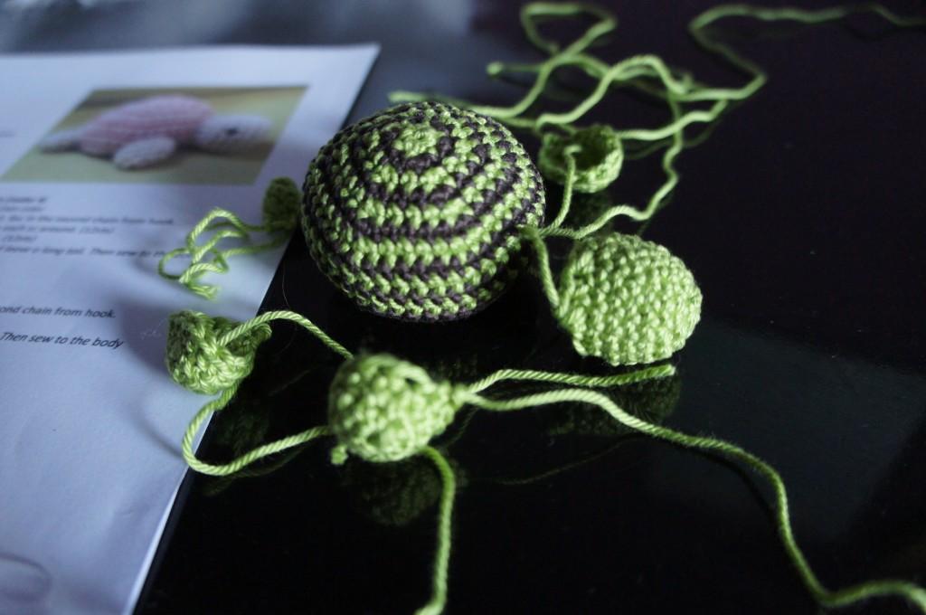 Schildkröte Einzelteile