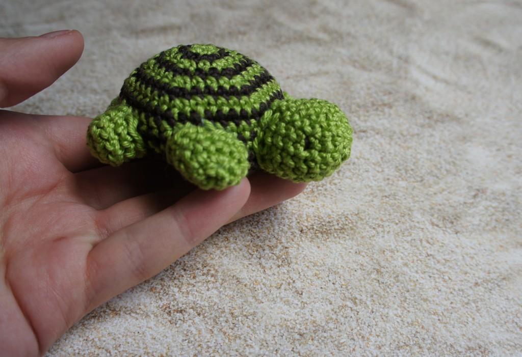 Schildkröte Kopf rechts