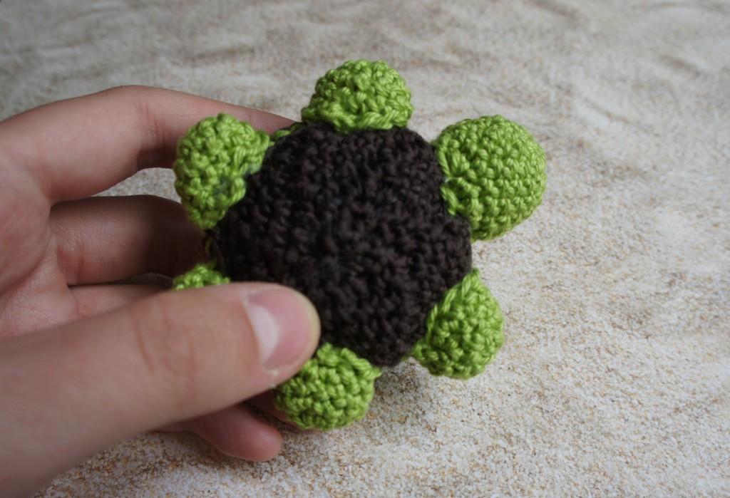 Schildkröte unten