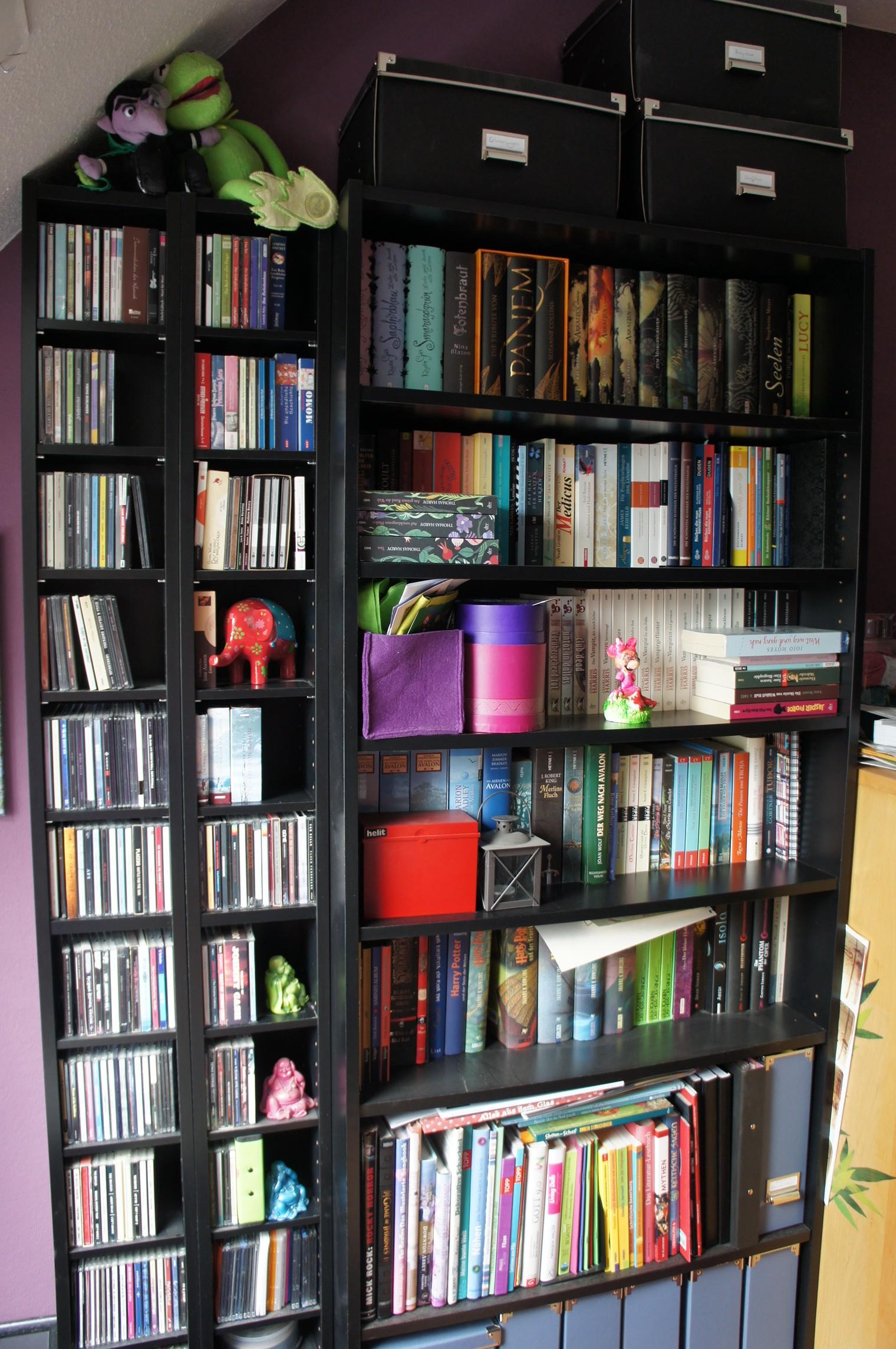 Bücherregal und CD-Regal (vorher)