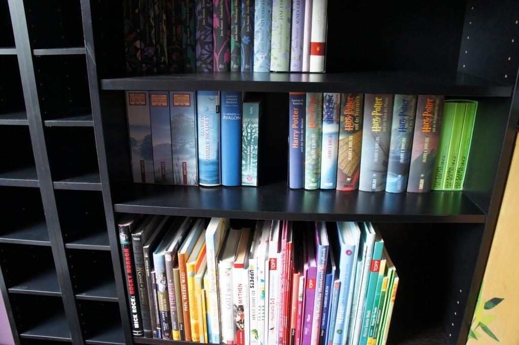 Bücherregal (nachher) Detail mit Sachbüchern